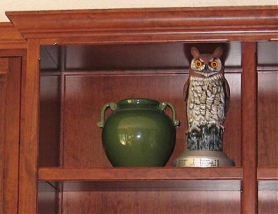 Derby Owl at current holder MVP July 2005
